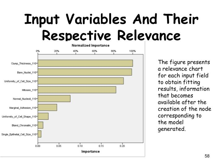 Input Variables And Their Respective Relevance