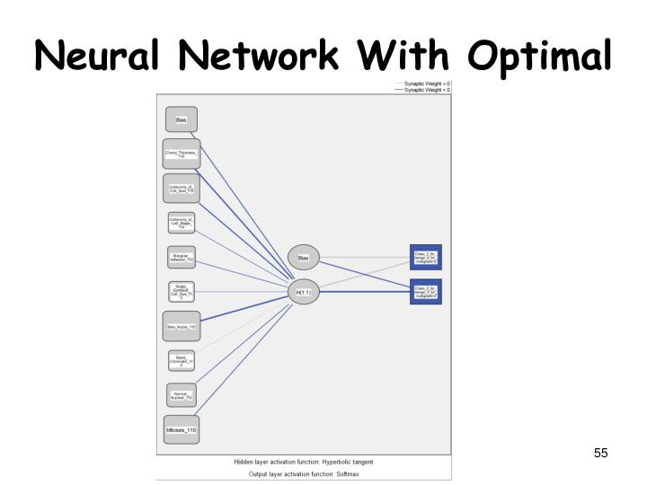 Neural Network With Optimal Architecture