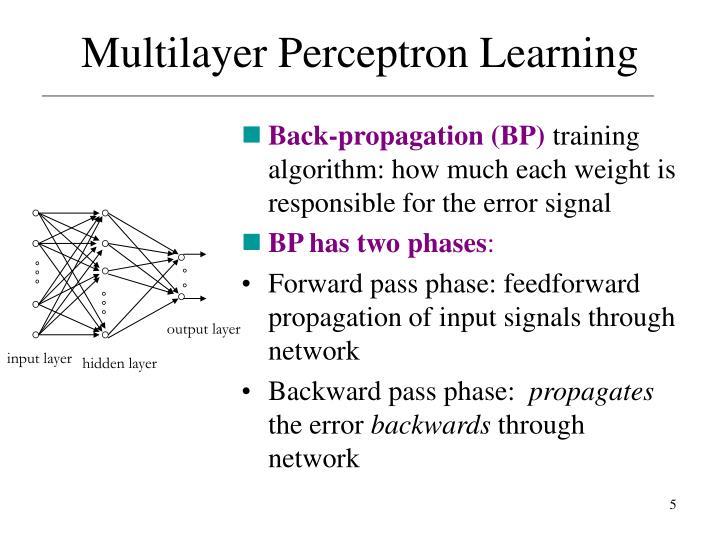 Back-propagation (BP)