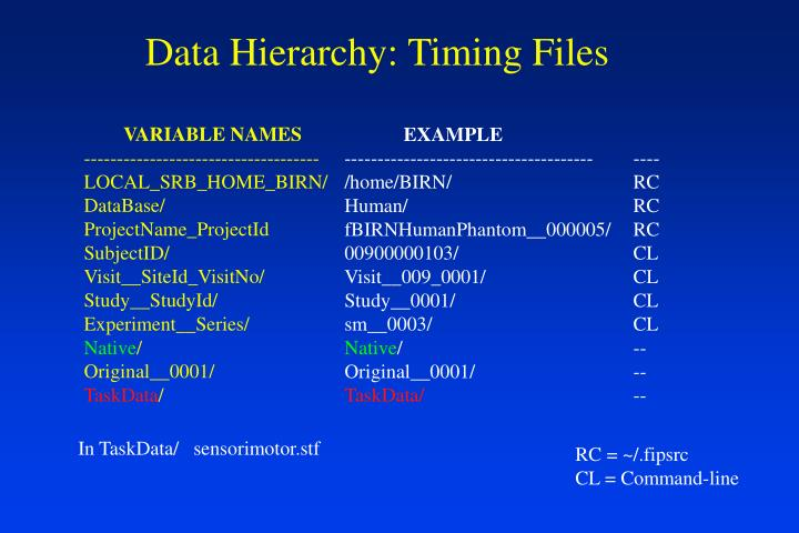 Data Hierarchy: Timing Files