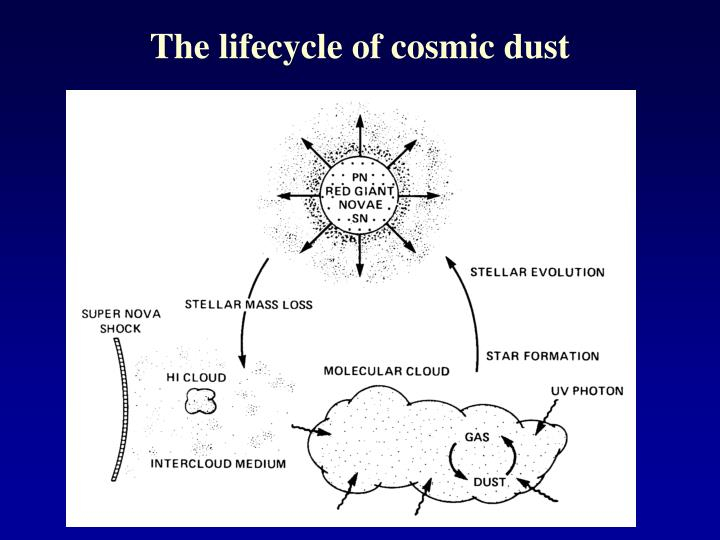 The lifecycle of cosmic dust