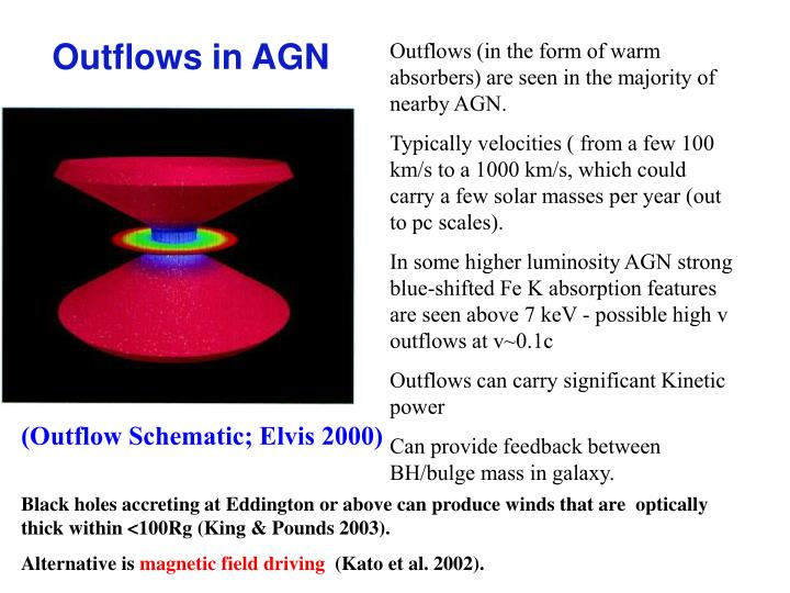 Outflows (in the form of warm absorbers) are seen in the majority of nearby AGN.