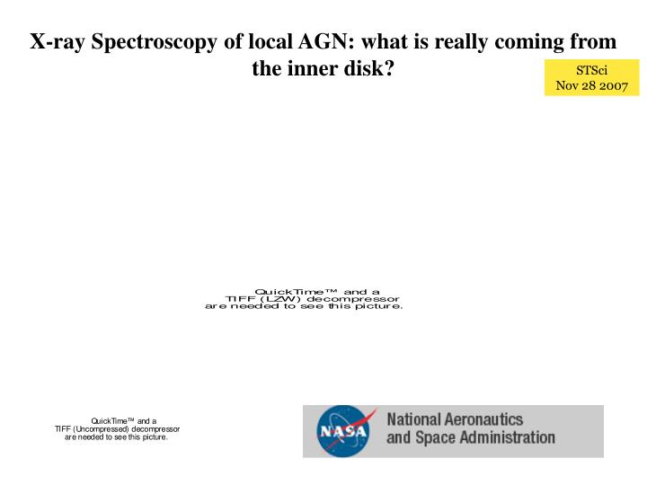 X-ray Spectroscopy of local AGN: what is really coming from the inner disk?
