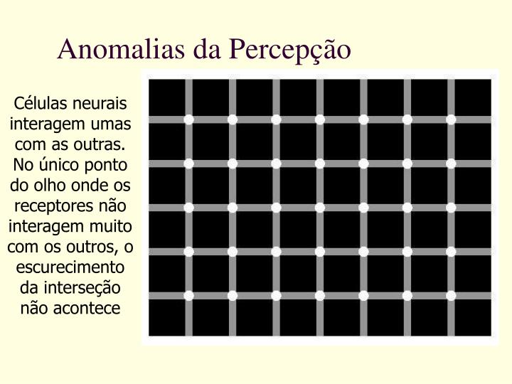 Anomalias da Percepção