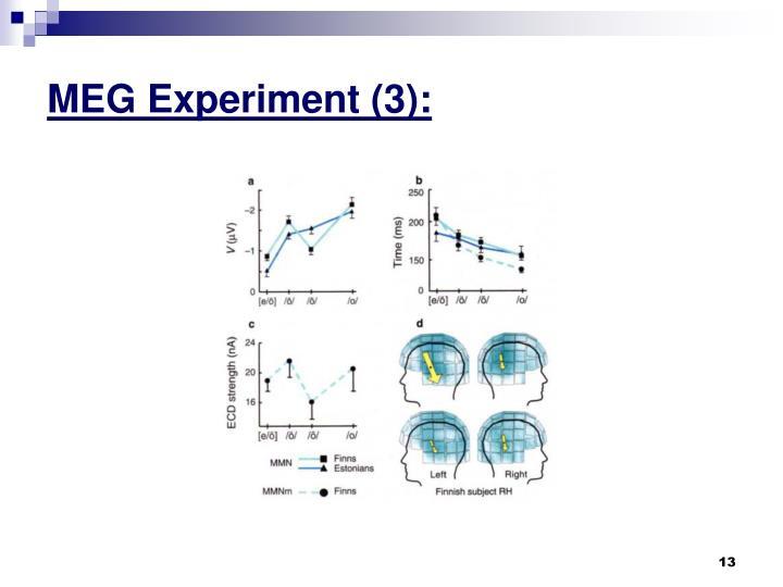 MEG Experiment (3):