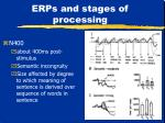 erps and stages of processing