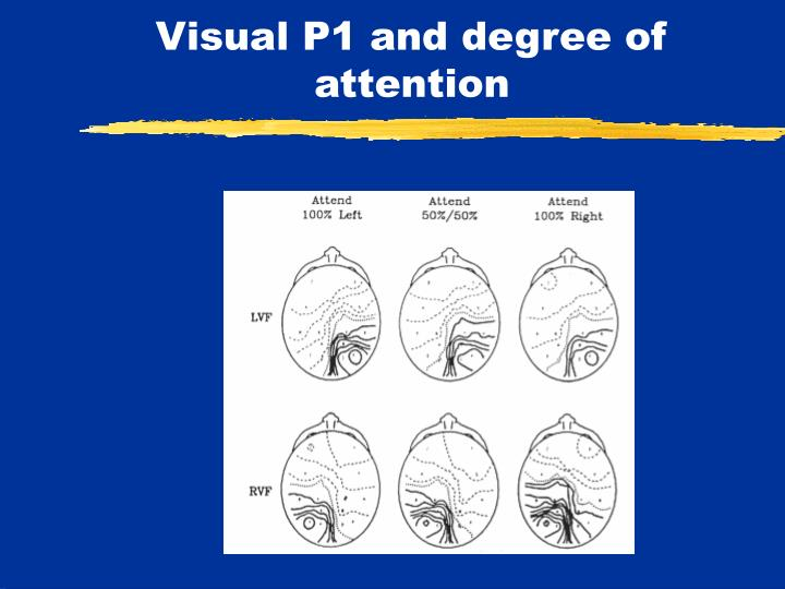 Visual P1 and degree of attention