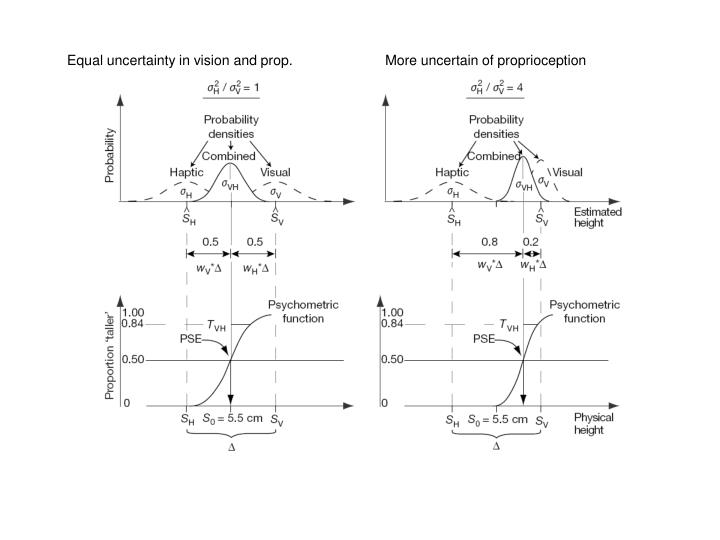 Equal uncertainty in vision and prop.
