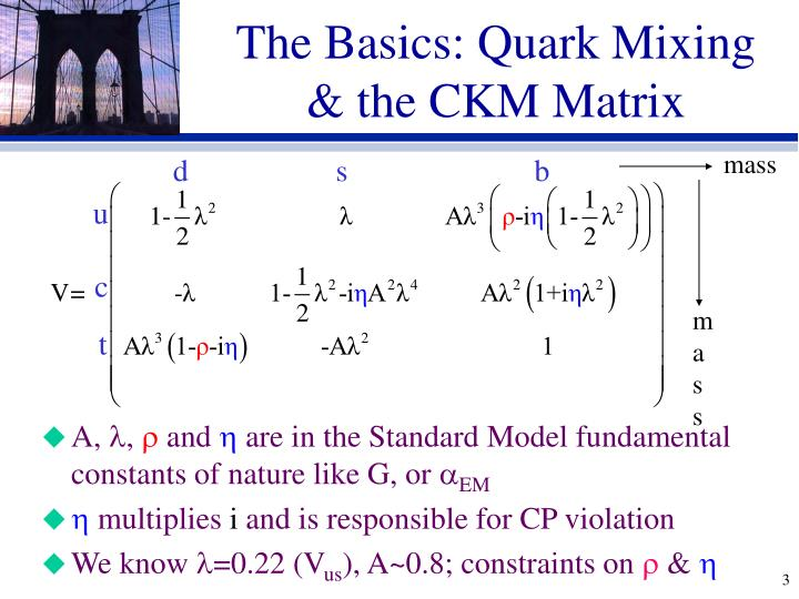 The basics quark mixing the ckm matrix