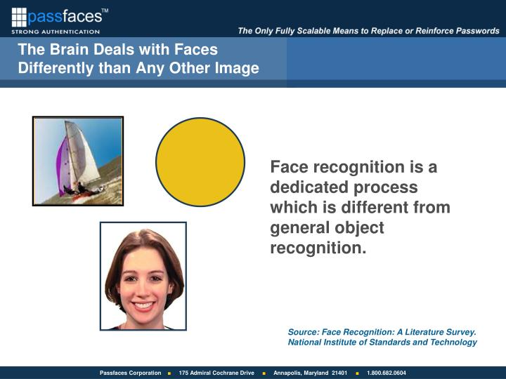 The Brain Deals with Faces Differently than Any Other Image