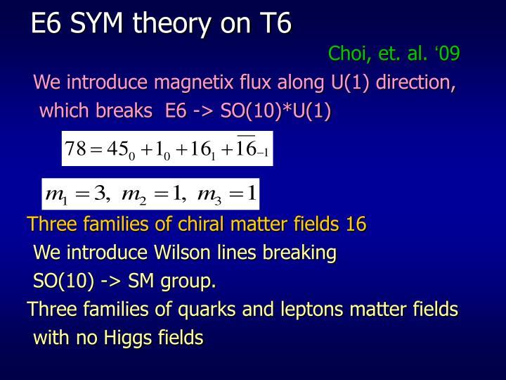 E6 SYM theory on T6