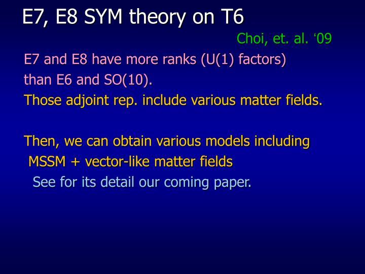 E7, E8 SYM theory on T6