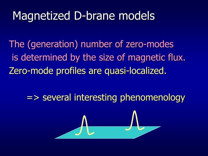 Magnetized D-brane models