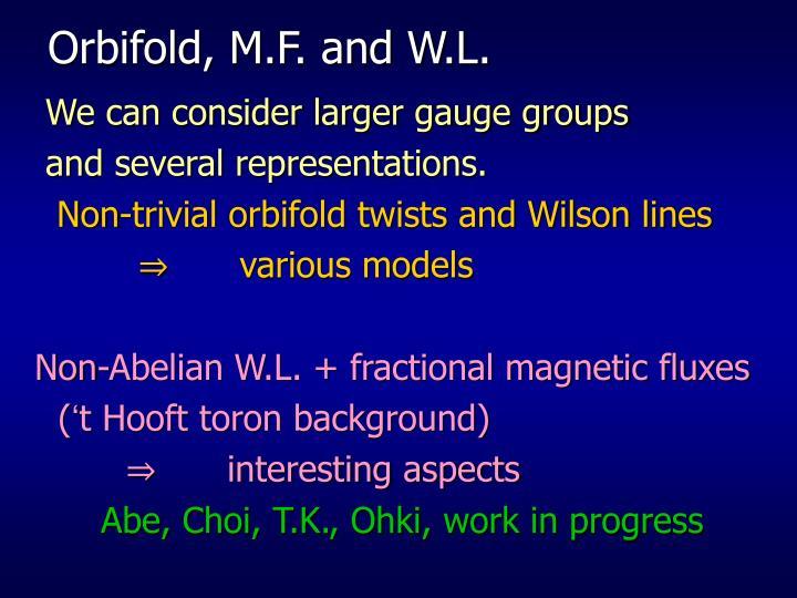 Orbifold, M.F. and W.L.