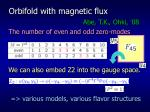 orbifold with magnetic flux1