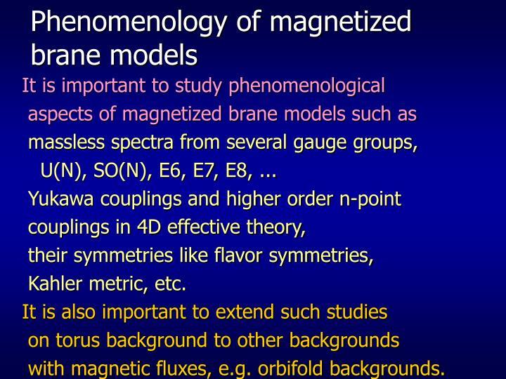 Phenomenology of magnetized