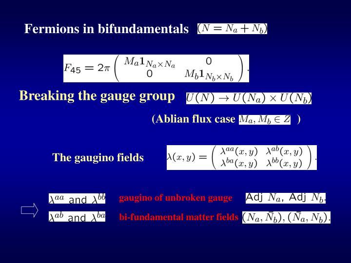 Fermions in bifundamentals