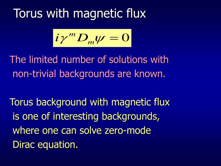 Torus with magnetic flux