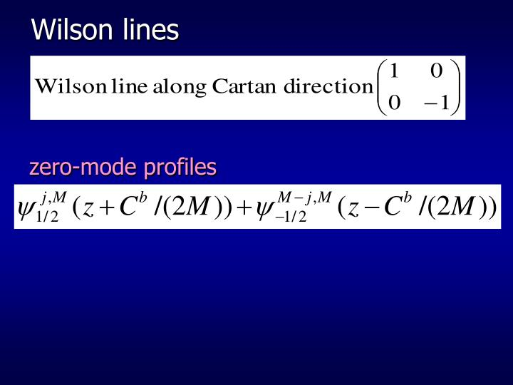 Wilson lines