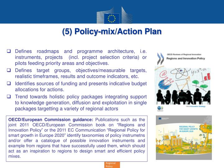 (5) Policy-mix/Action Plan