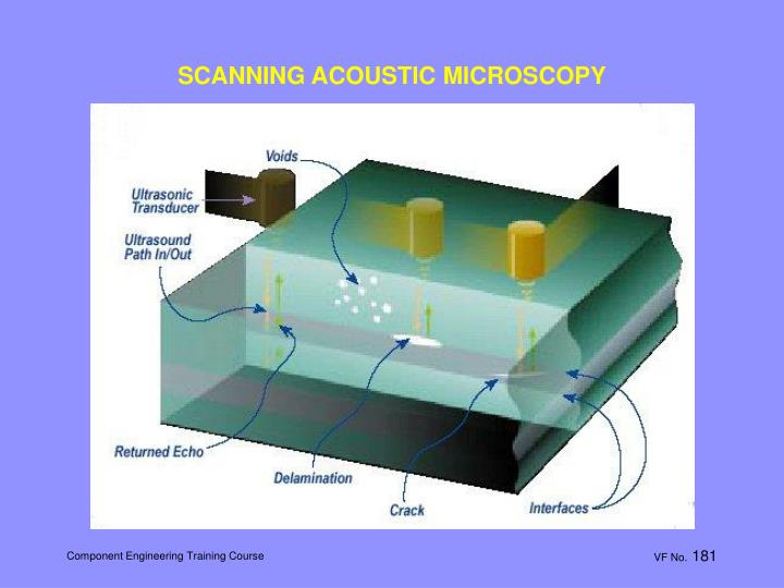 SCANNING ACOUSTIC MICROSCOPY