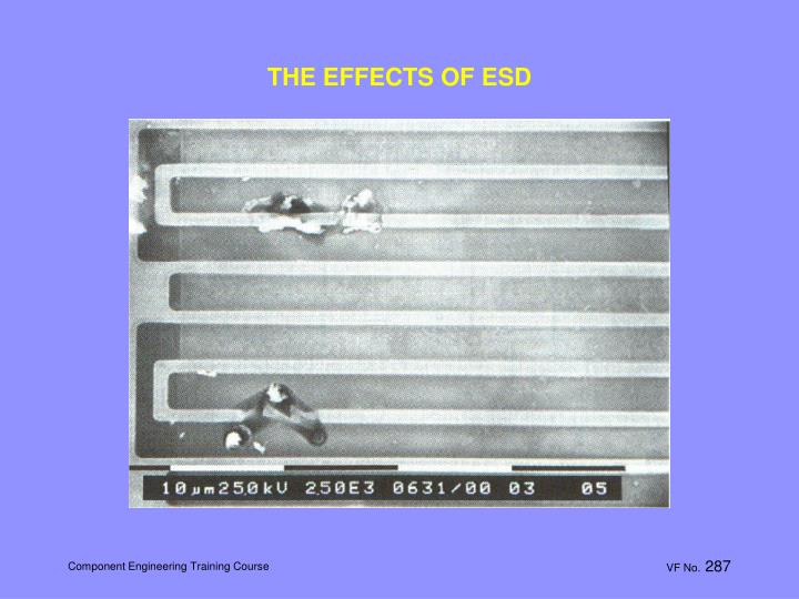 THE EFFECTS OF ESD