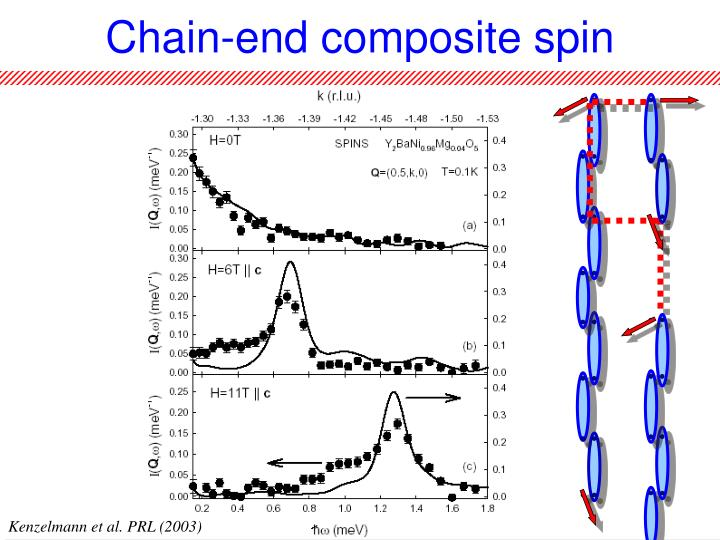 Chain-end composite spin