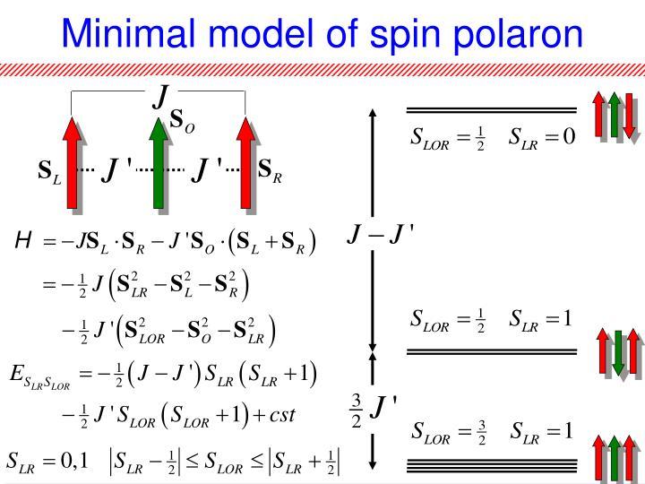 Minimal model of spin polaron