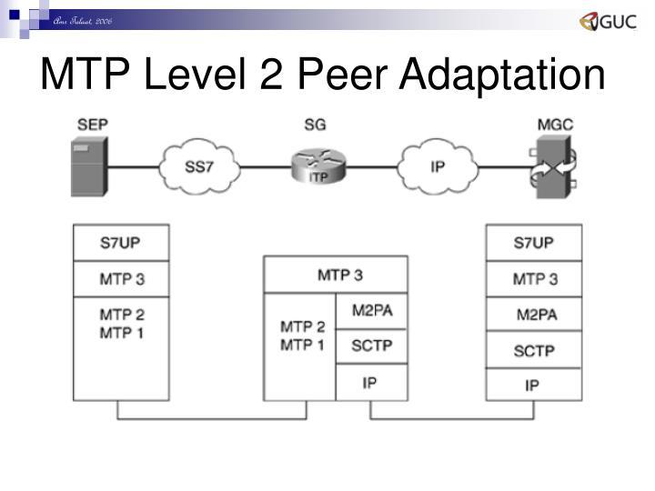MTP Level 2 Peer Adaptation