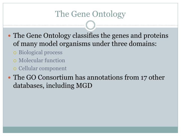 The Gene Ontology