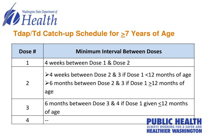 Tdap/Td Catch-up Schedule for