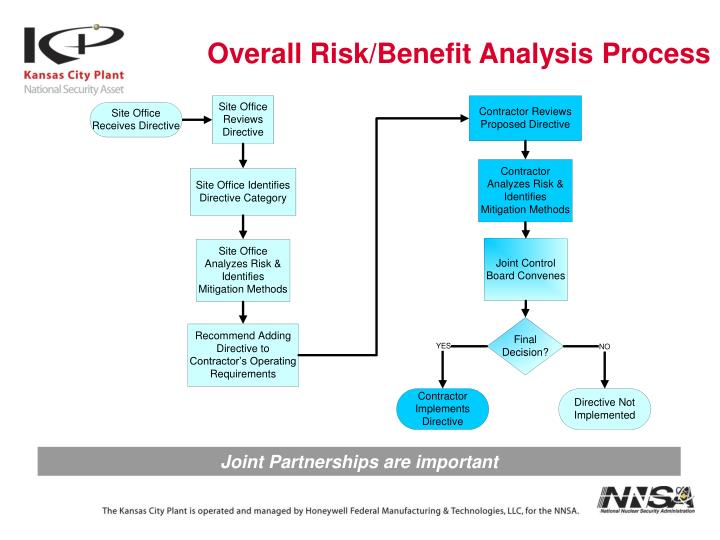 Overall Risk/Benefit Analysis Process