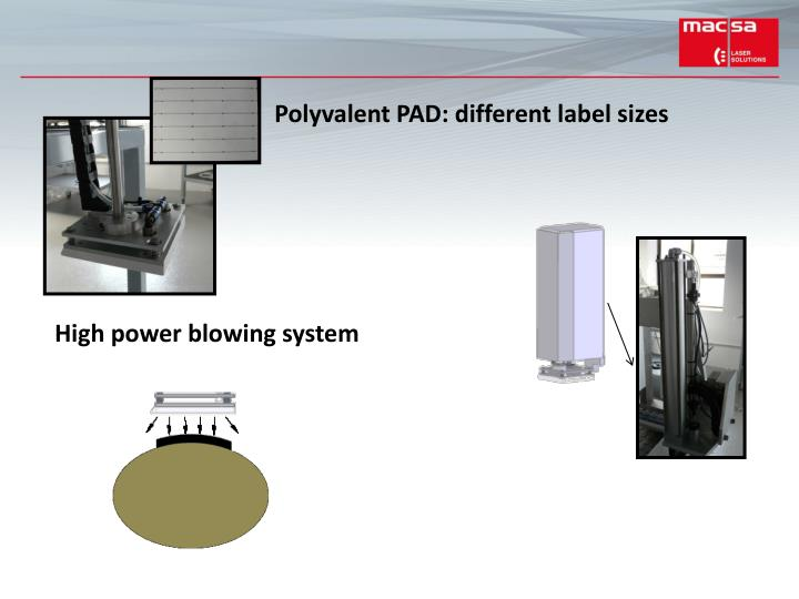 Polyvalent PAD: different label sizes