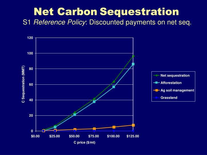 Net Carbon