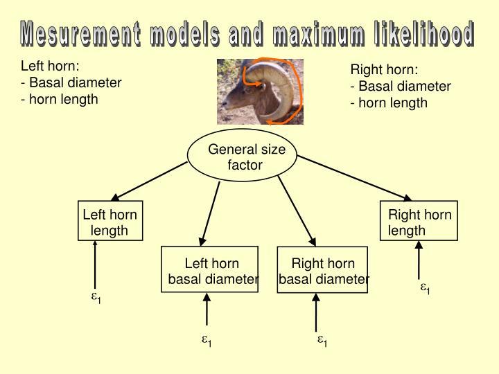 Left horn: