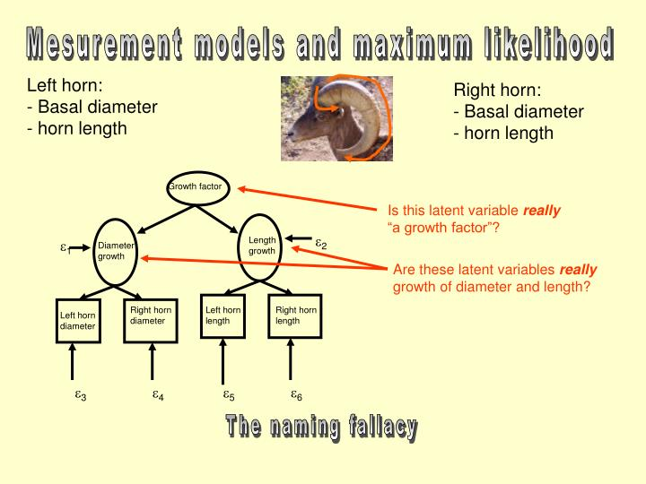 Mesurement models and maximum likelihood