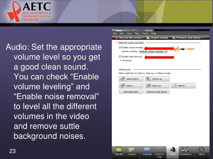 """Audio: Set the appropriate volume level so you get a good clean sound. You can check """"Enable"""