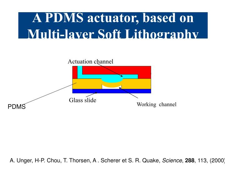 A PDMS actuator, based on Multi-layer Soft Lithography