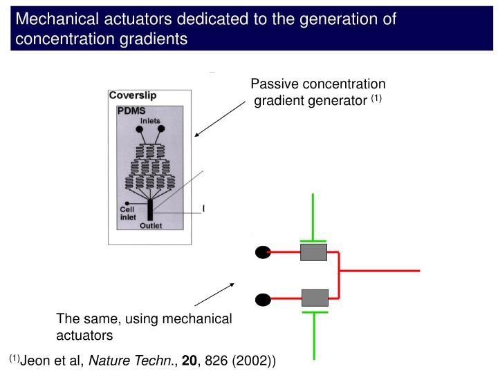 Mechanical actuators dedicated to the generation of concentration gradients