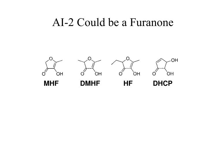 AI-2 Could be a Furanone