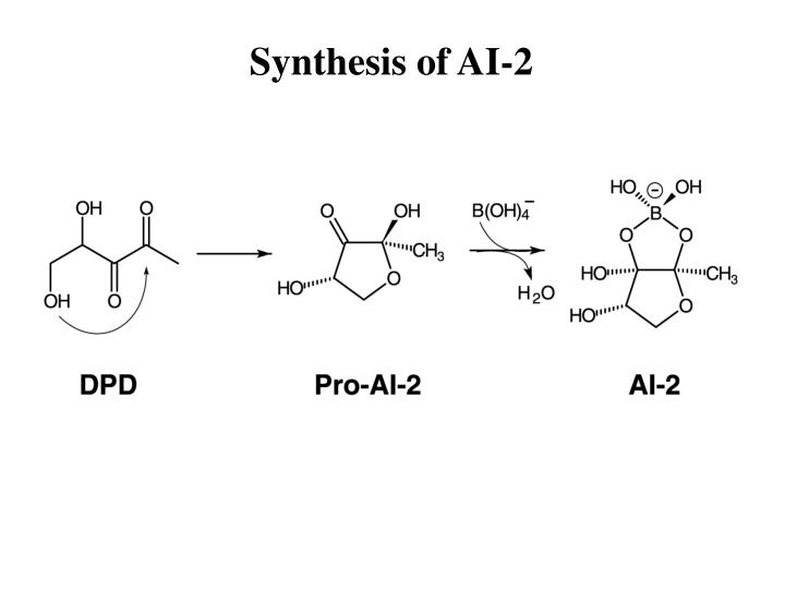Synthesis of AI-2