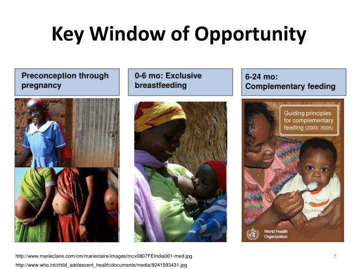 Key Window of Opportunity