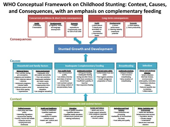WHO Conceptual Framework on Childhood Stunting: Context, Causes, and Consequences, with an emphasis on complementary feeding