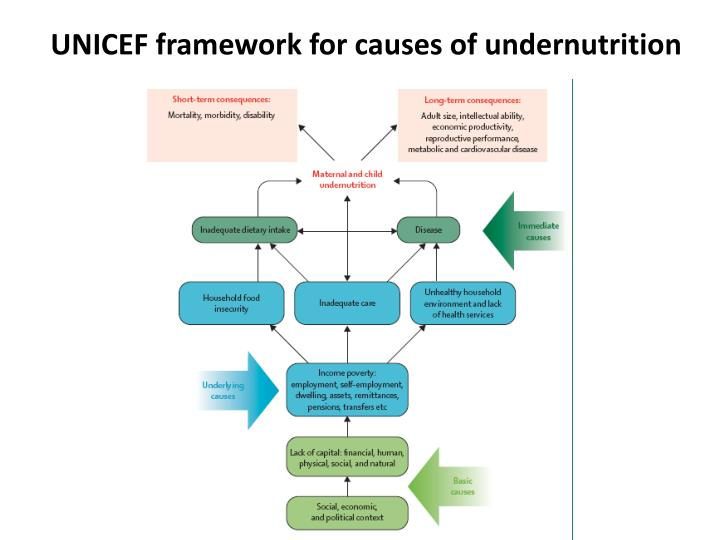 Unicef framework for causes of undernutrition