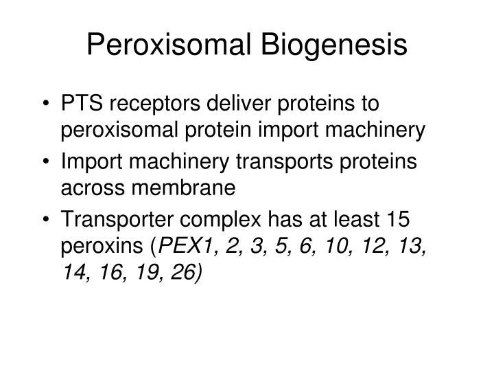 Peroxisomal Biogenesis