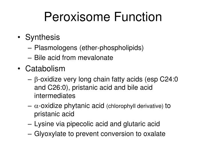 Peroxisome Function