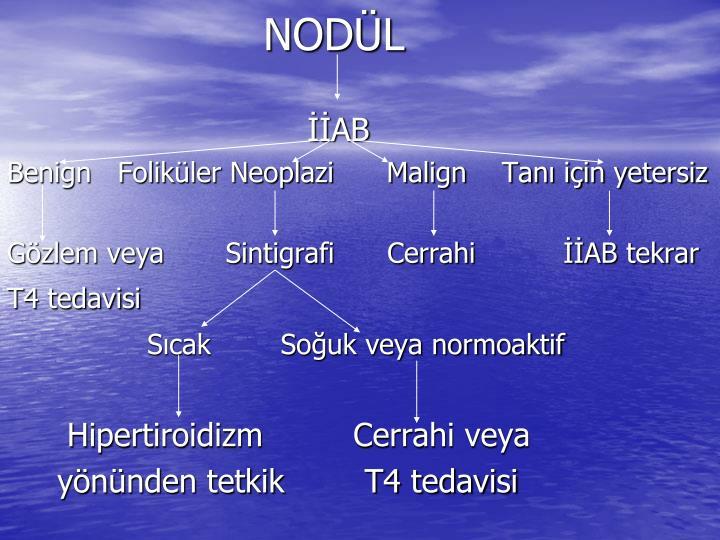 NODÜL