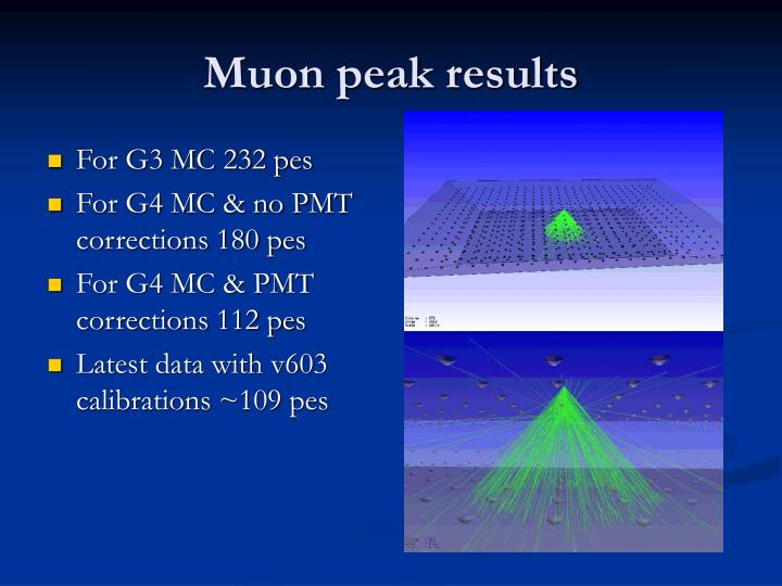 Muon peak results