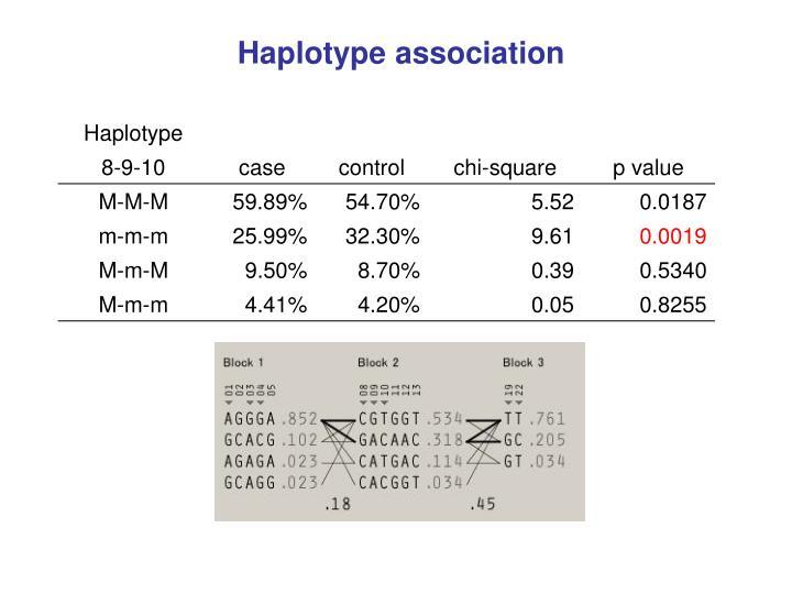 Haplotype association