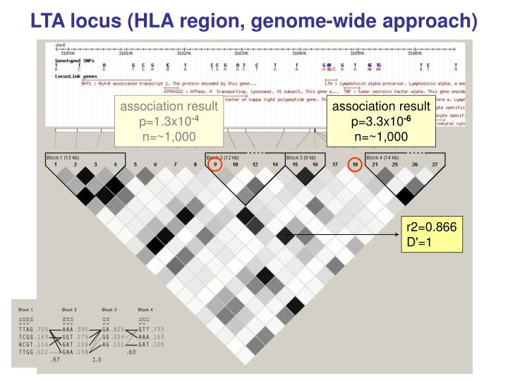 LTA locus (HLA region, genome-wide approach)